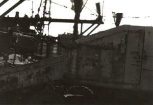 Img265